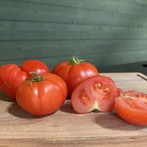 Verse tomaten bestelling bij Stichting Het Terphuis