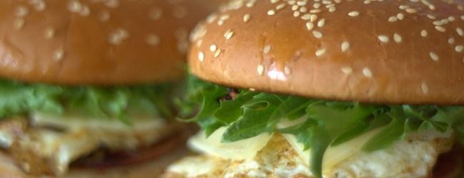 Théorie du hamburger