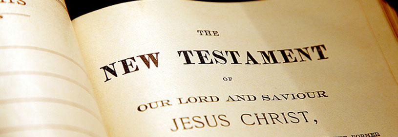 The New Testament Page