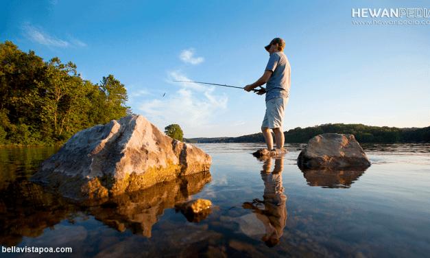 6 Faktor Musim dan Alam yang Mempengaruhi Hasil Tangkapan Mancing di Danau