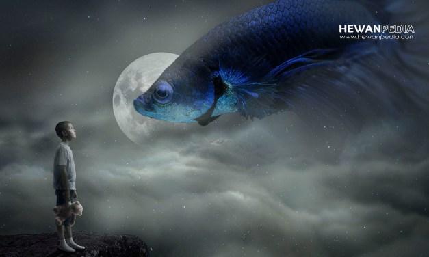 11 Arti Mimpi Melihat Ikan Versi Tafsir Islam