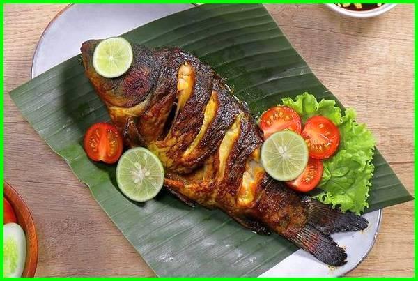 masak ikan mas, cara masak ikan mas, resep masak ikan mas, ikan masak, cara memasak ikan mas, cara memasak ikan mas goreng