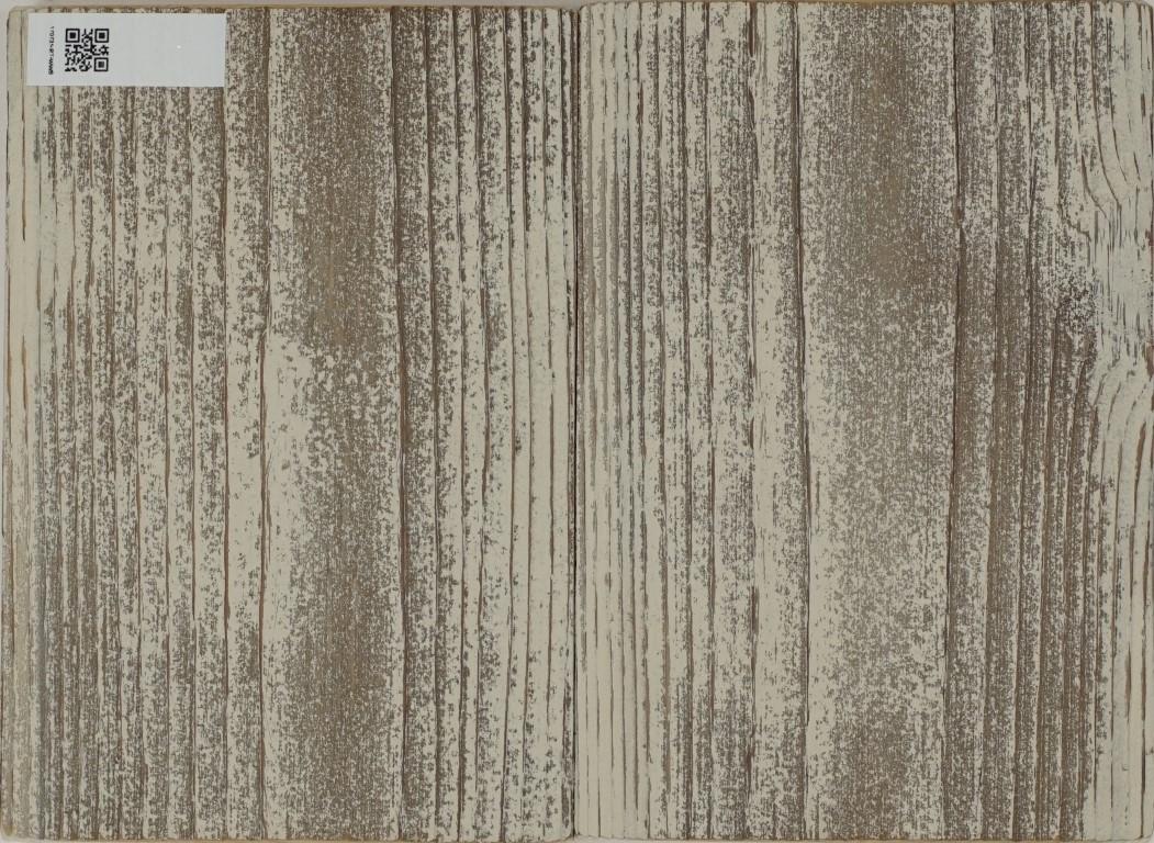 170731-RT-WWS-F