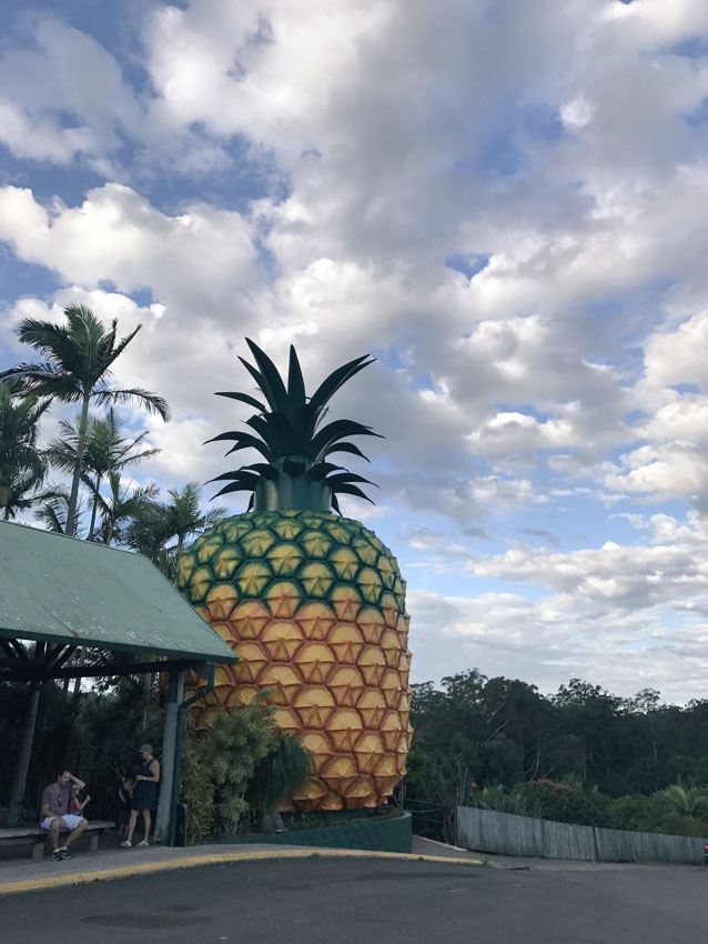 Another view of the Big Pineapple