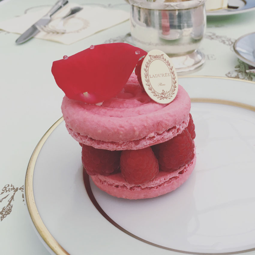Large rose flavoured macaron with fresh raspberries inside