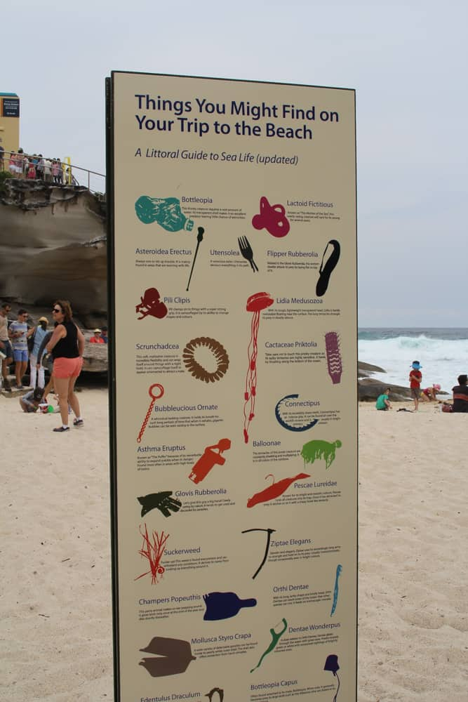 The artwork was titled 'aquarium of the pacific gyre' by Marina DeBris