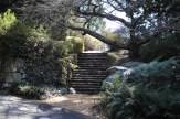 Blue-Mountains-Botanic-Gardens-27