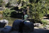 Blue-Mountains-Botanic-Gardens-35