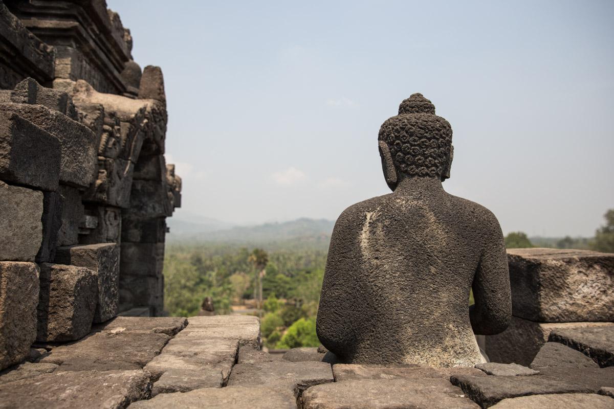 The back of a stone Buddha's head