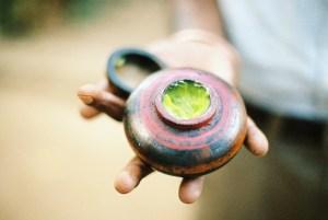 Ranweli Spice Garden|Matale, Sri Lanka