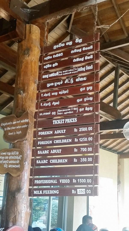 Sri-Lanka-WEB-4