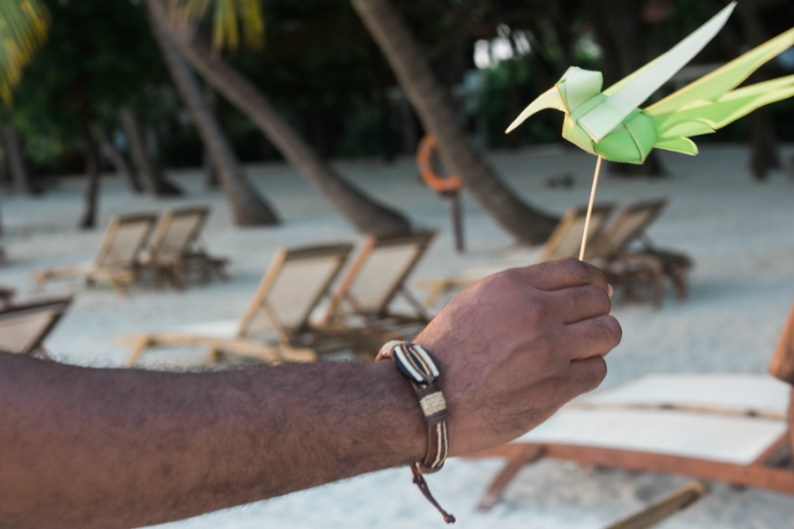 Maldives Kurumba Beach Palm Bird Romance