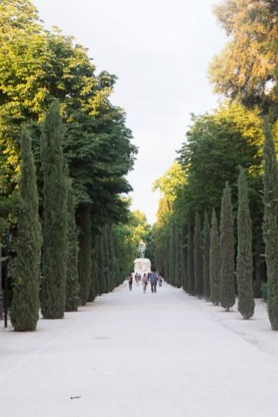 Summer Buen Retiro Park Madrid