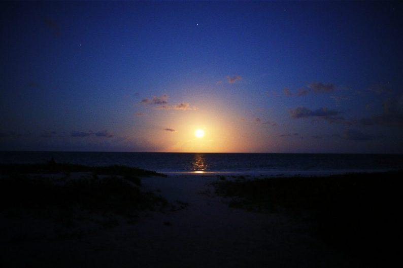Zanzibar Hakuna Majiwe   First chances