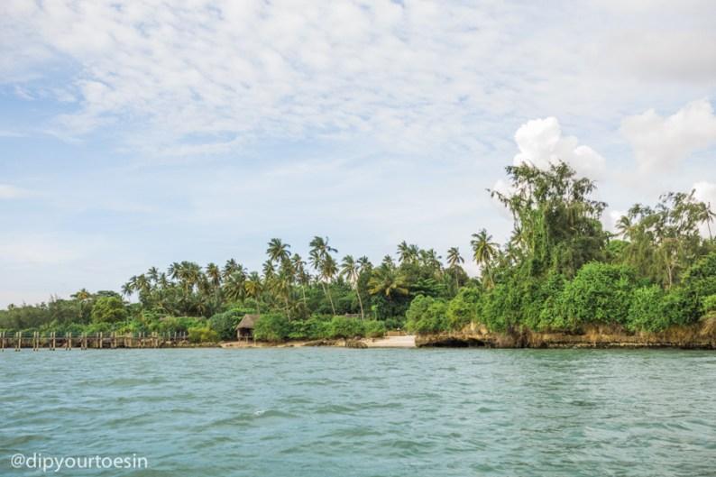 Coast of Zanzibar | A GLOBAL VILLAGE FOR THE PREPARED TRAVELLER: Zika Virus