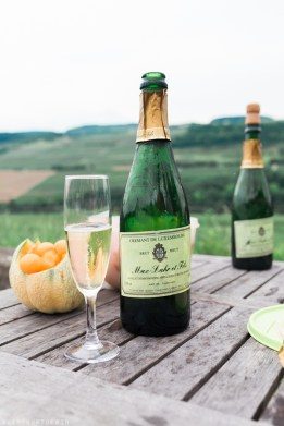 Things to do in Luxembourg   Wine tasting in Moselle with Max Lahr   Visit Luxembourg