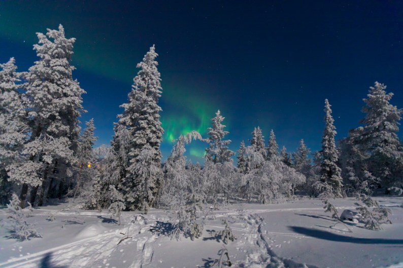 Northern Lights | Finland | Why Lapland Should Be On Every Travel Bucket List