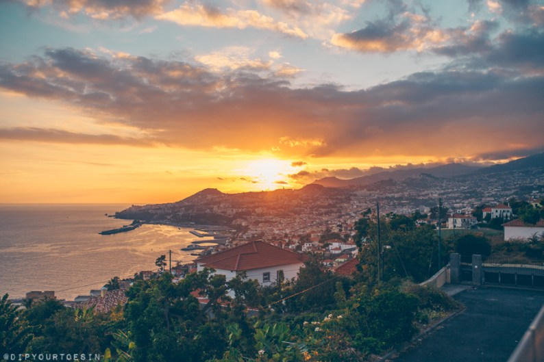 View of harbour in Funchal, Madeira | Visit Portugal in One Week
