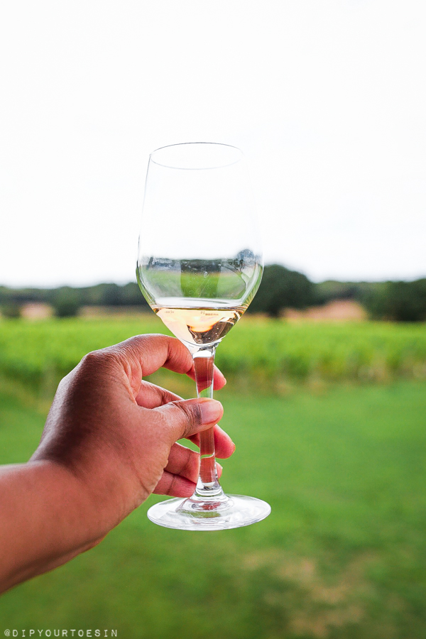 Wine glass | Five Vineyards to Visit in Kent