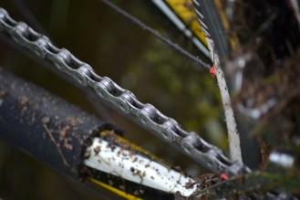 Photo | Cyclocross