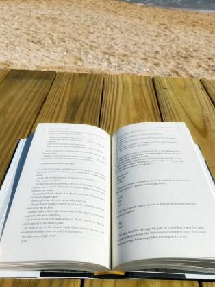 Novel by Erin Morgenstern
