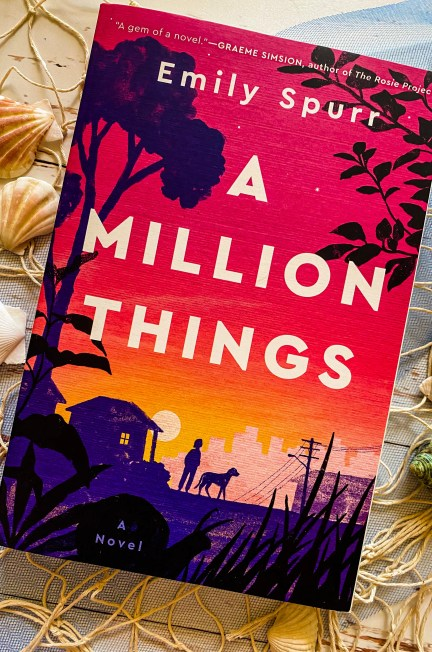 A Million Things by Emily Spurr Review