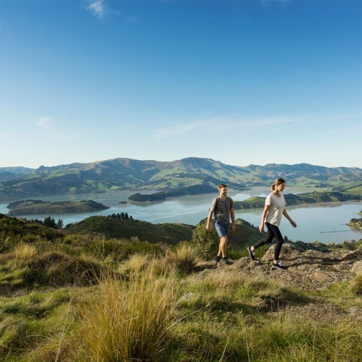 Hiking near Christchurch | What to do in Christchurch | 48-Hours in Christchurch