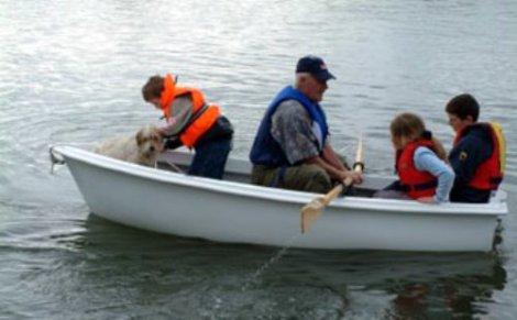 Heyland Swan Rowing Boat