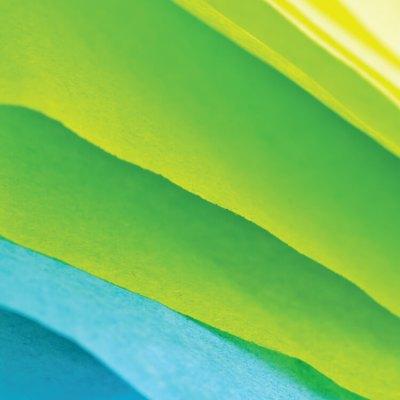 Best Websites To Buy Bulk Tissue Paper