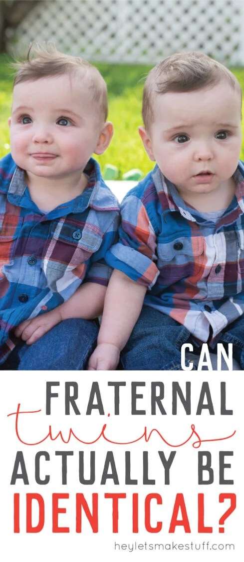 Can Fraternal Twins Actually Be Identical? - Hey, Let's Make