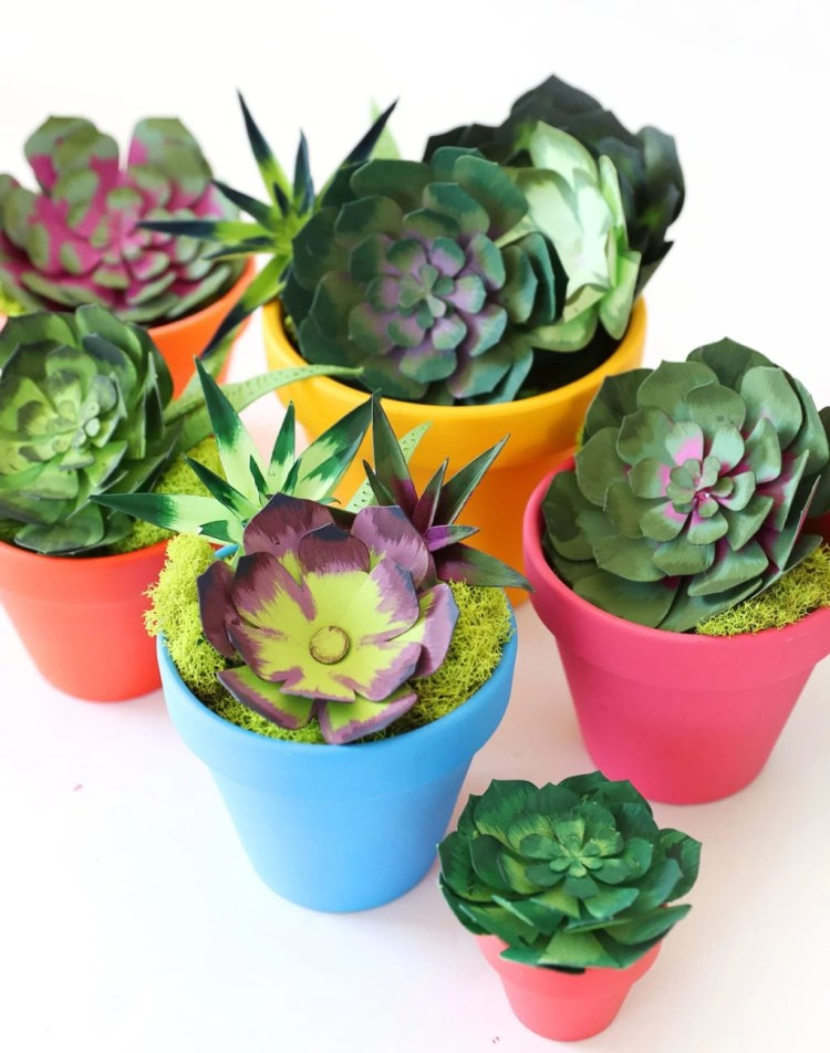 How to Make Realistic Paper Succulents with Cricut