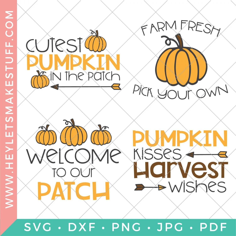 pumpkin patch SVG bundle