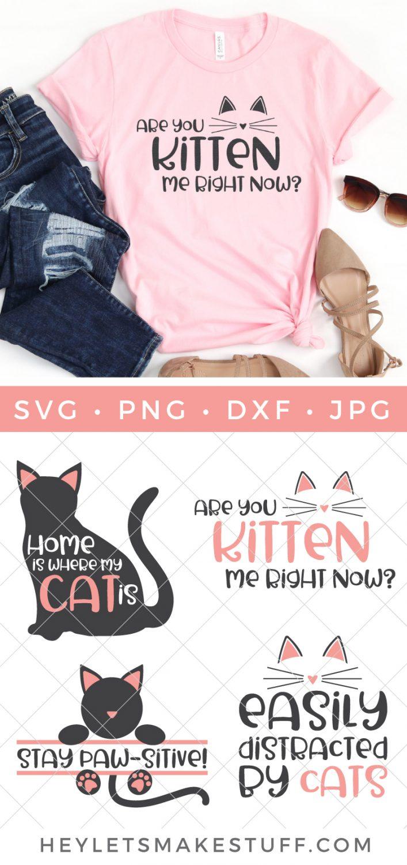Cat SVG Bundle pin image