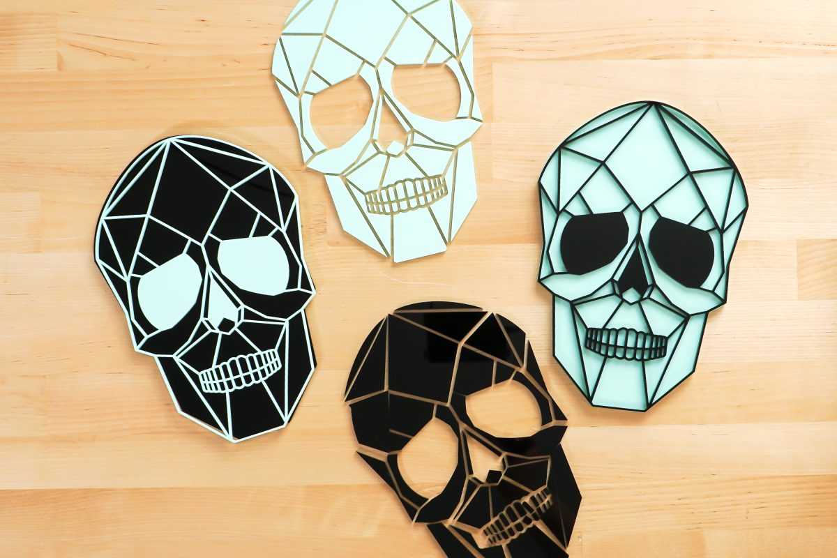 All the skull parts together