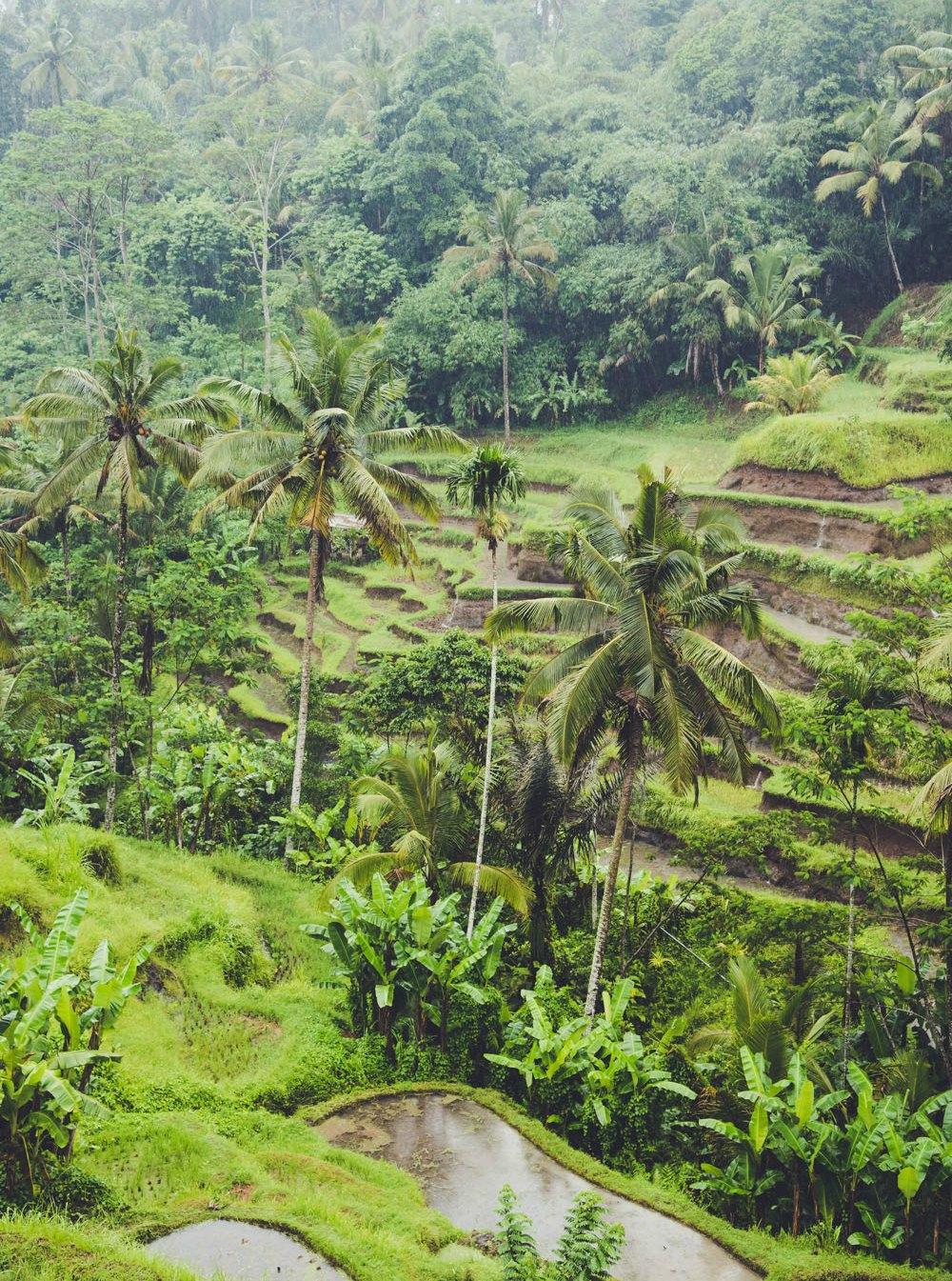 bali travel guide 2