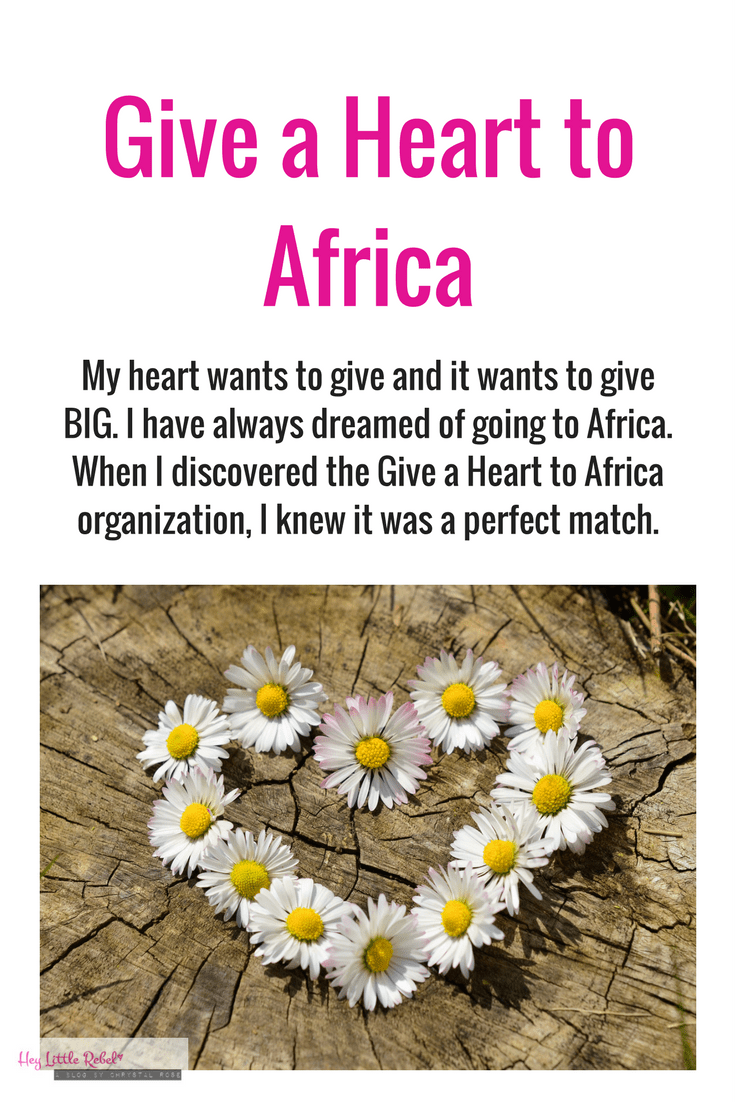 Have you heard of the Give a Heart to Africa organization? I'm going to Tanzania this summer to work with them. You can read all about them here.