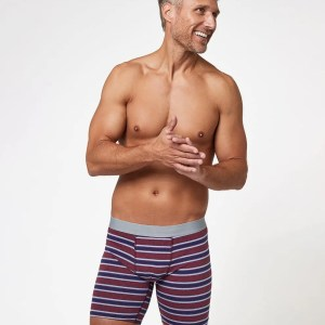 Men's Cabernet Stripe Extended Boxer Brief L