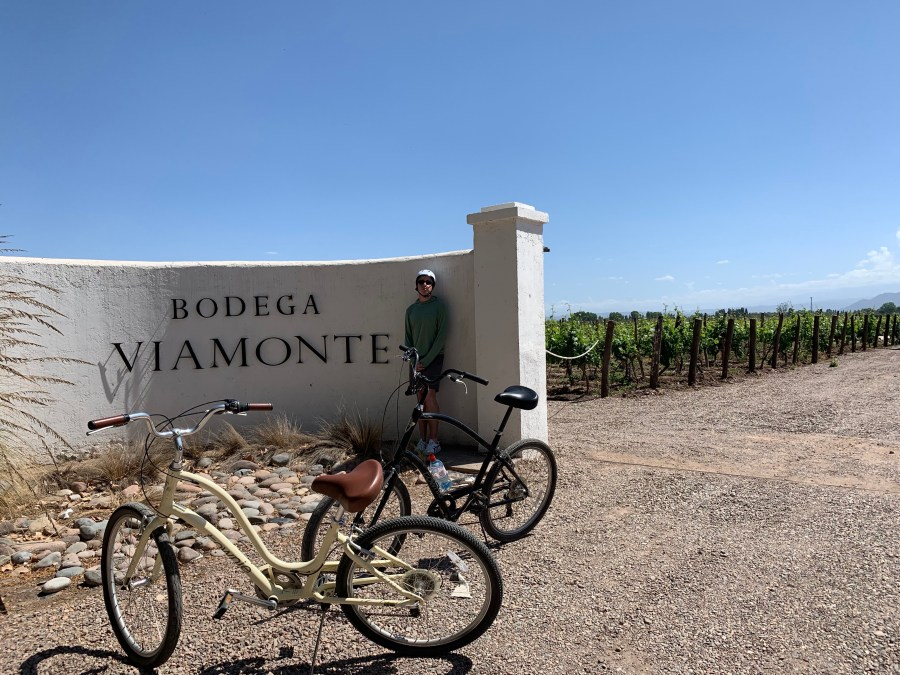 Bikes and wines in Lujan de Cuyo.