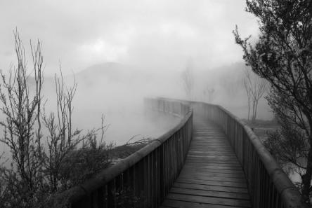 bridge into fog