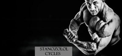 stanozolol-cycles