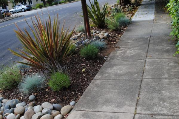 landscaping sidewalks