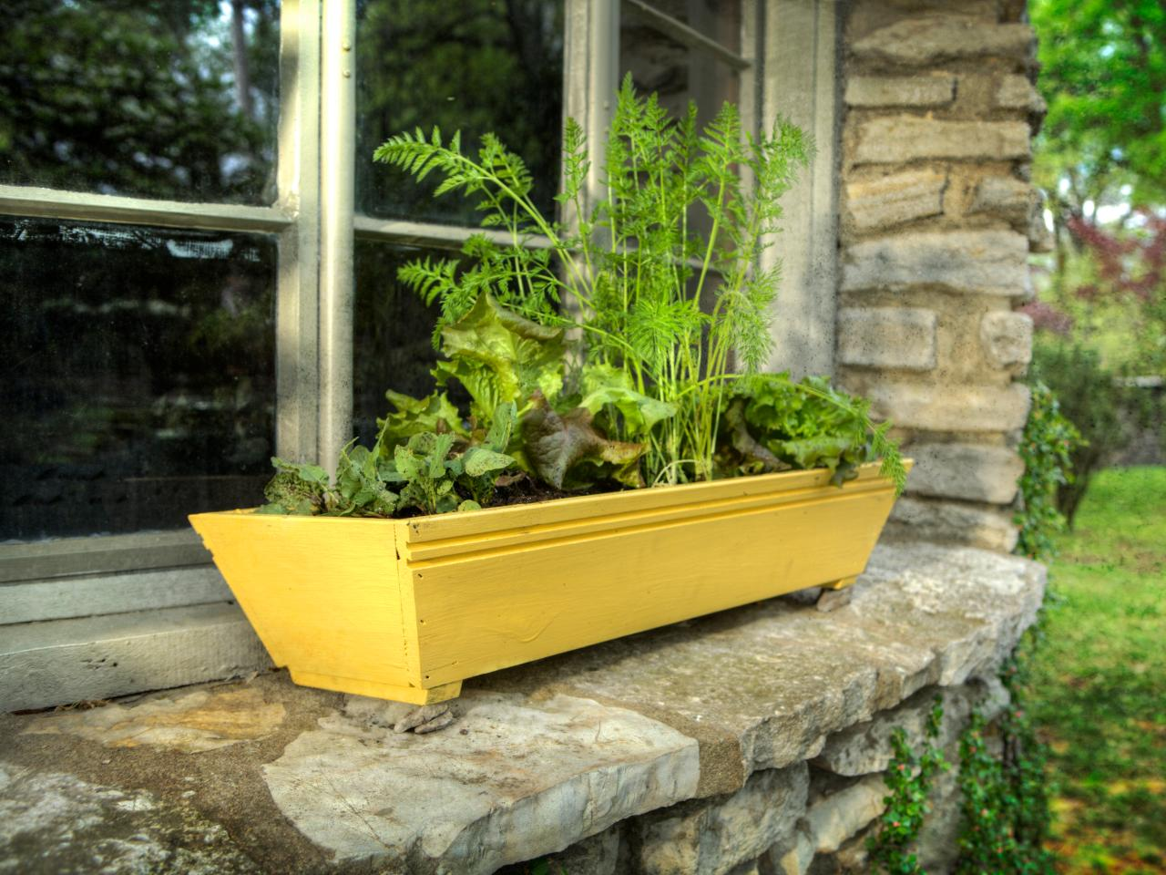 Vegetable Garden Window Box