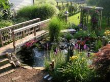 Backyard Pond Bridges