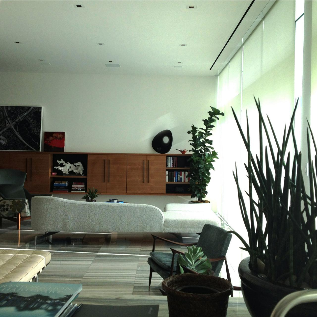 artificial house plants living room design ideas with grey sofa rules for decorating faux hgtv s sleek modern space filled indoor