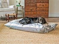 Pet Projects: Make a DIY Dog Bed | HGTV