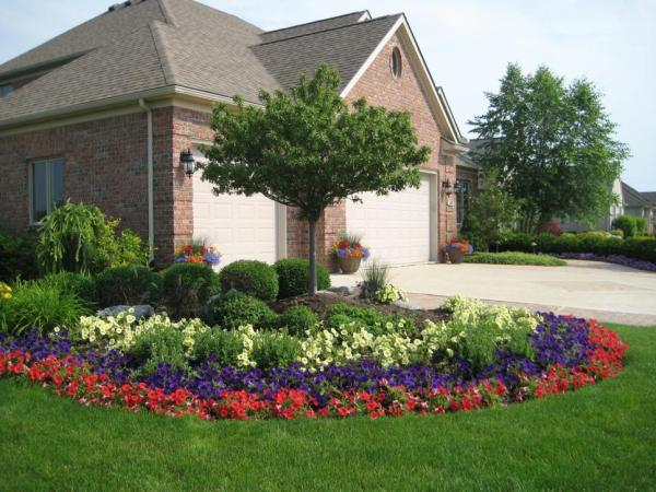 plants add instant curb appeal