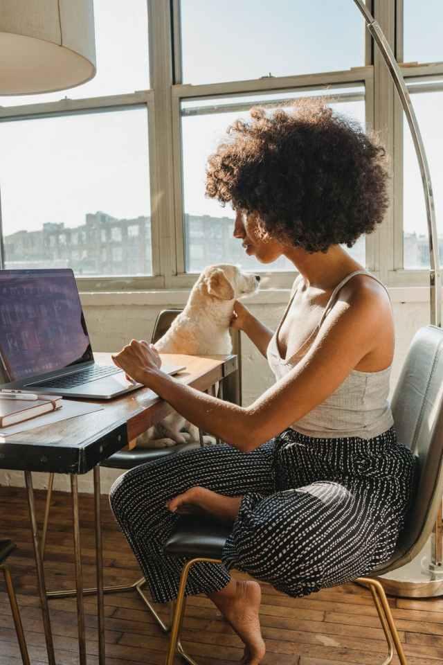 black female freelancer using computer with dog