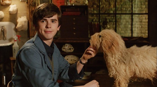 bates-motel-season-1-8-a-boy-and-his-dog-norman-taxidermy-juneau-juno-review-episode-guide-list