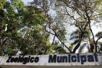 Zoológico de Rio Preto recebe intervenção artística do Núcleo 2 (Foto: Divulgação/Prefeitura)