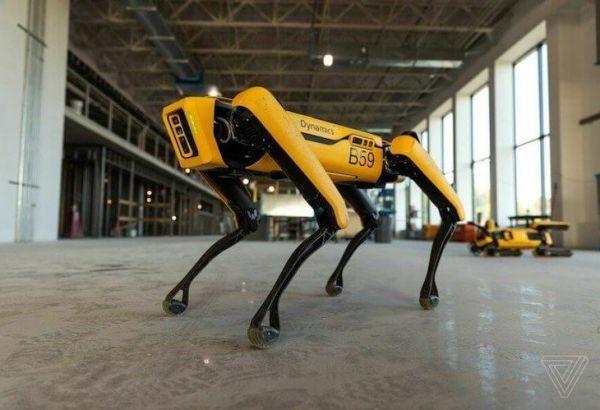 Робот-собака по кличке Spot для помощи медикам.